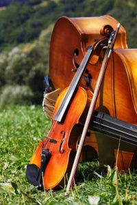 6f420d-20120113-violin-cello