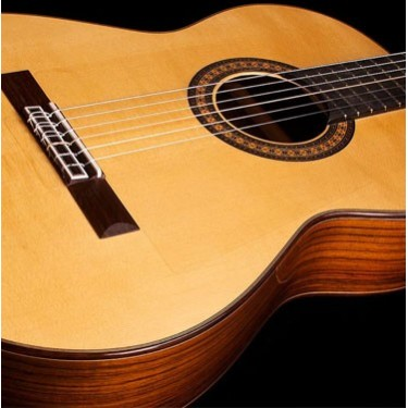 Humingbird-Music-Academy-Guitar-01